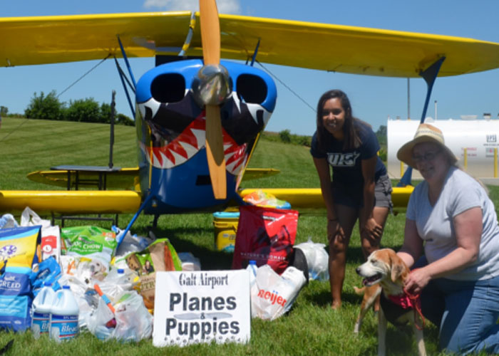 Planes And Puppies Feature Image